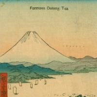 115. Formosa Oolong Tea