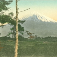 1245. Fuji from Sengo-no-hara