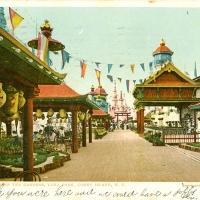 3315. Japanese Tea Gardens, Luna Park, Coney Island, N.Y.
