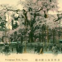 1430. Maruyama Park, Kyoto