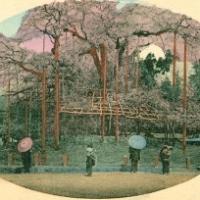 1431. Maruyama Park