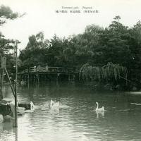 3031. Tsurumai Park (Nagoya)