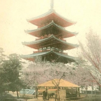 2905. Pagoda at Kofukuji, Nara