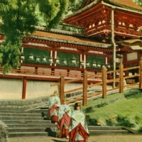 1486. Kasuga Grand Shrine, Nara