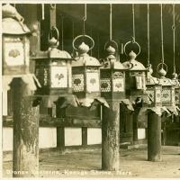 2851. Bronze Lanterns, Kasuga Shrine, Nara