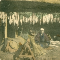 2703. Drying radishes an old man basking in the sun