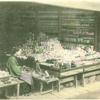 2705. A China Shop in Kyoto
