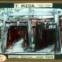 3072. Inari Shrine, near Nara