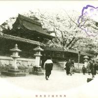 2310. Kikko Garden at Iwakuni, Suo Province
