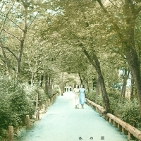 3122. Flower Road, Takarazuka