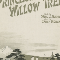 3570. My Princess of the Willow Tree (1917)