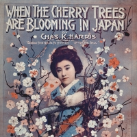 1548. When the Cherry Trees are Blooming in Japan (1918)