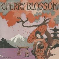 3167. Cherry Blossom (1917)