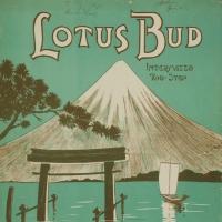 2001. Lotus Bud (1910)