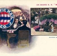 2913. On Board S.S. Manchuria, Wisteria Arbor, Japan